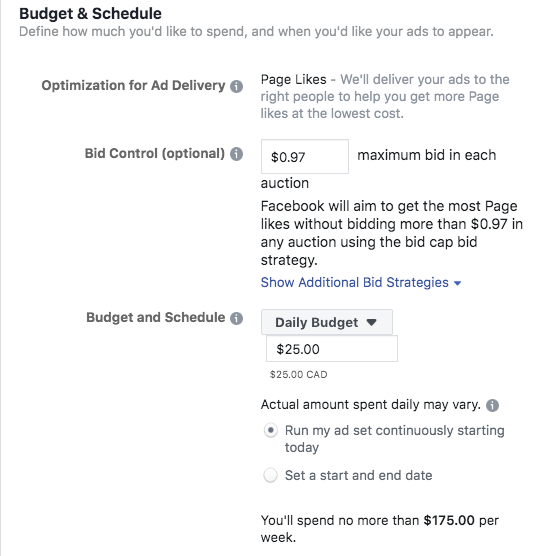 Options to set your ad budget