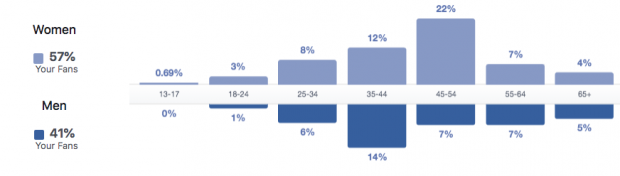 Screenshot of the Facebook Audience Insights view