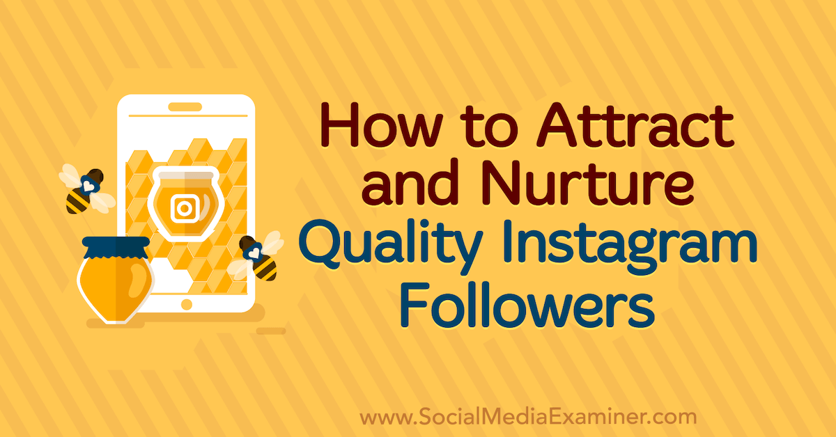 How to Attract and Nurture Quality Instagram Followers : Social Media Examiner