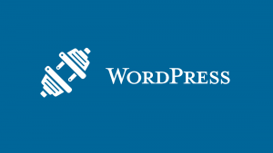 The 20+ Plugins Used on a 1mil+/month WordPress Website