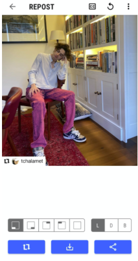 Preview of regrammed Timothee Chalamet photo, with regram icon and credit in corner of photo