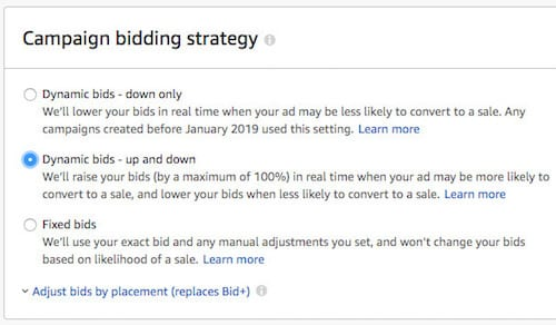 Amazon Campaign Bidding Strategy Options