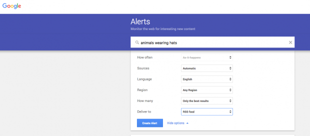 """Google alerts for """"animals wearing hats"""""""