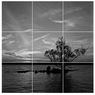 image of a tree on a lake divided into 9 equal squares