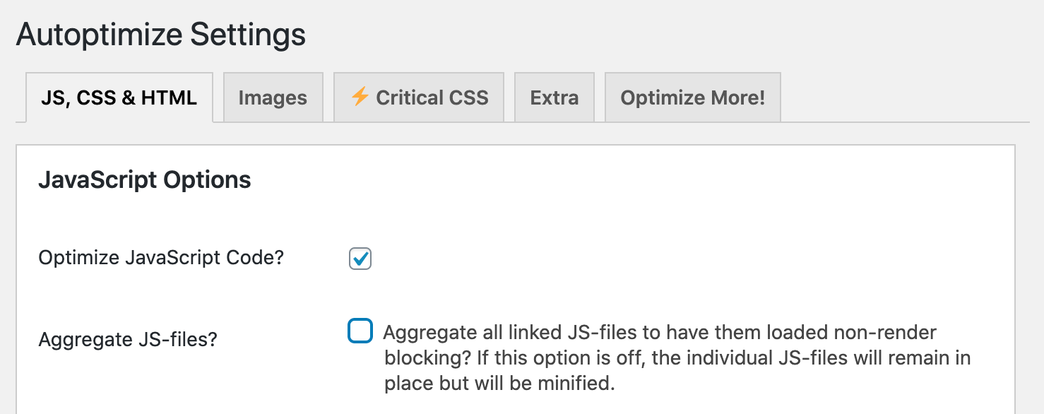 the settings page in the autoptimize plugin