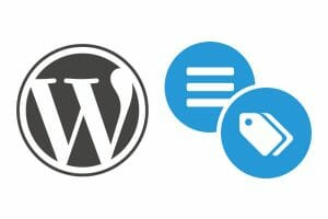 How to Use Tags with Good SEO in WordPress