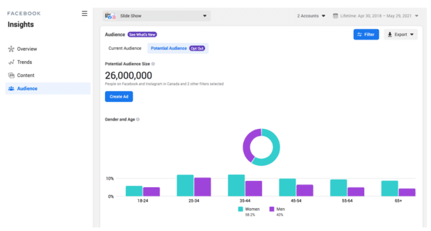 Facebook Insights audience